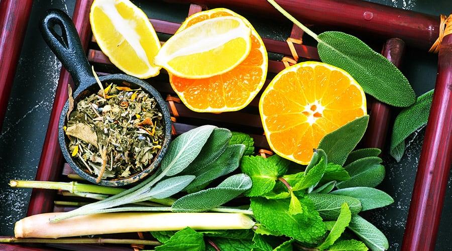 05-Bolido Product BotanicalExtract-Teaherbalfuit-1