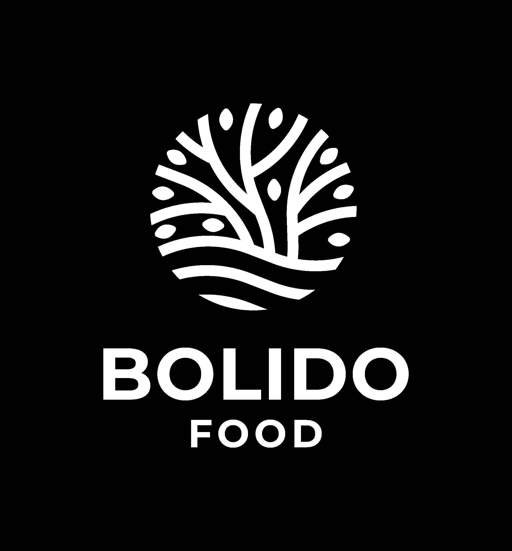 Bolido-Logo-FA RGB@-06